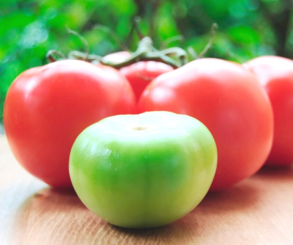 healthy eating tomatoes